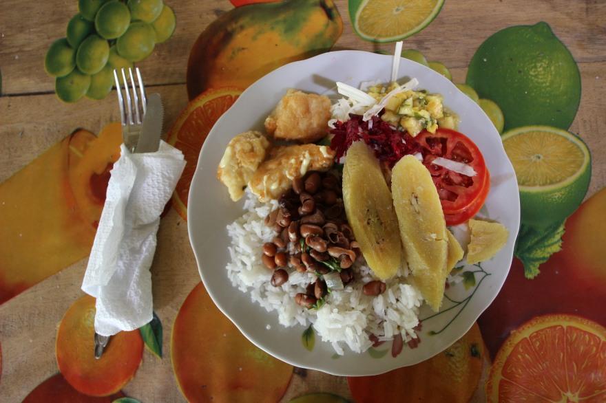 24_comida de la selva